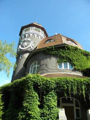 Здание в старинном стиле, увитое плющом